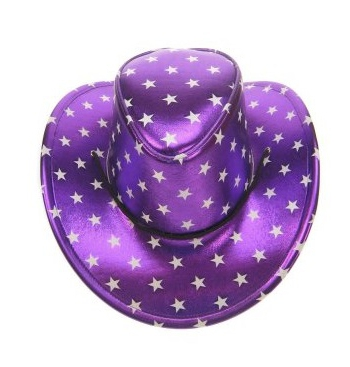 Cowboyhoed metallic paars